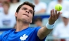 Canada Charts Two Singles in Tennis Top 40 with Raonic and Pospisil