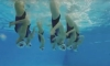 Learn more about Synchronized Swimming
