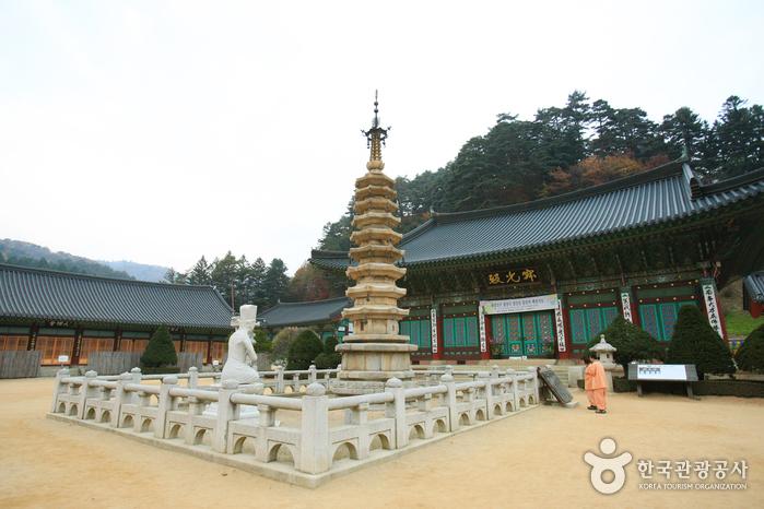 Team Canada - Korea 101 Tourism Woljeongsa Temple