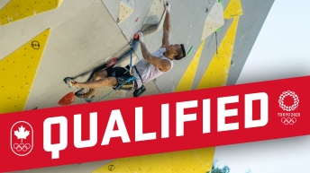 Qualified graphic with sport climbing in the background
