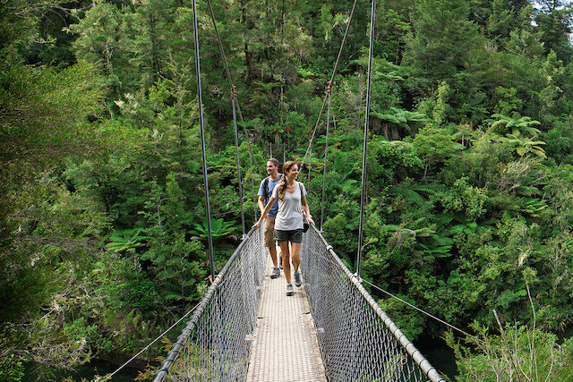 man and woman walking on a suspended bridge in the jungle.