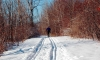 The best cross-country skiing spots in Canada
