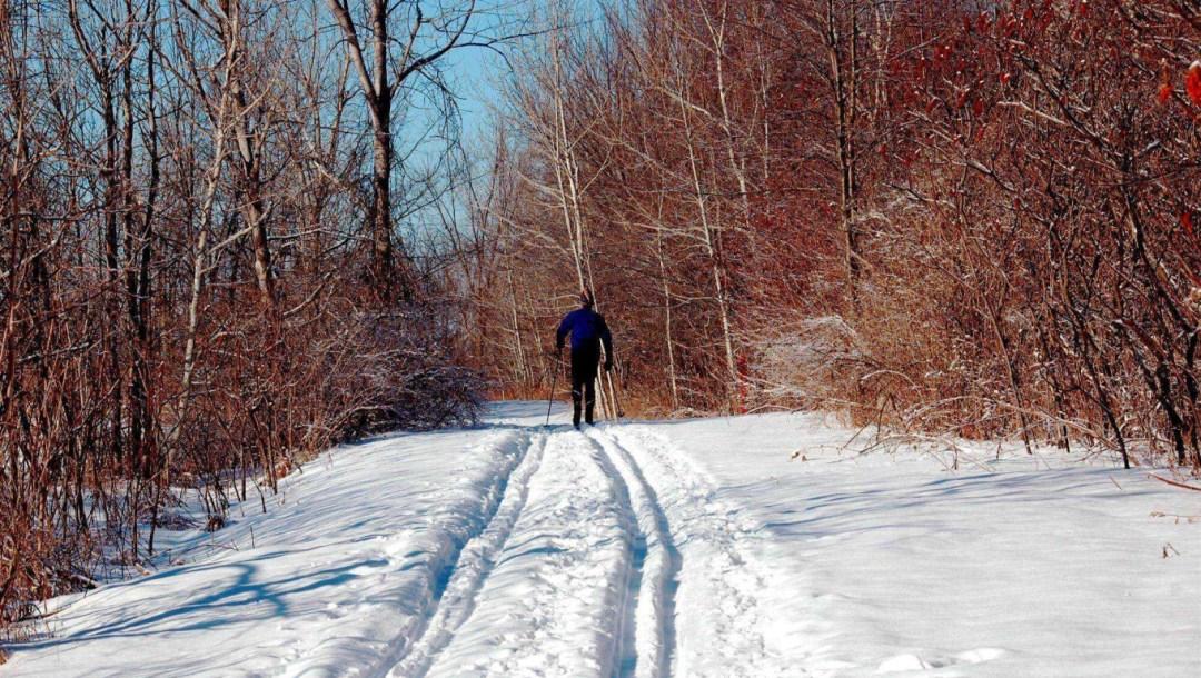Greenbelt_Trail_AndersonRd_Scenic_Winter_CrossCountrySkier_HRN_0731