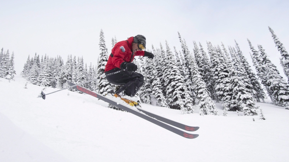Alpine skier with trees in background