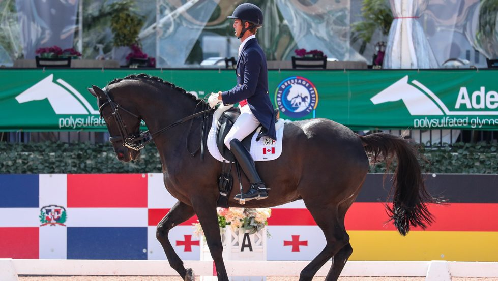 Dressage rider and horse in competition