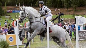 Equestrian rider and horse jumping over obstacle