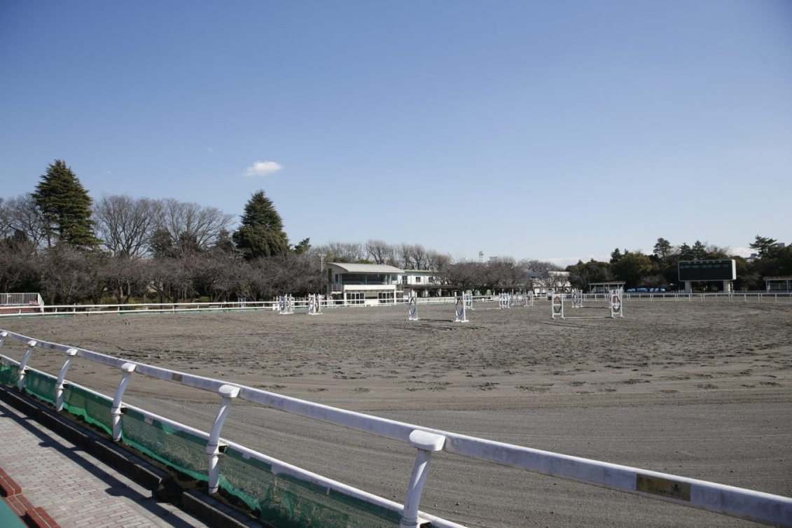 Parc équestre (Photo courtoisie de Tokyo 2020)
